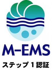 mems2